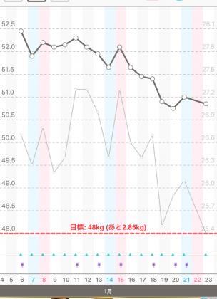 体重と体脂肪のグラフ