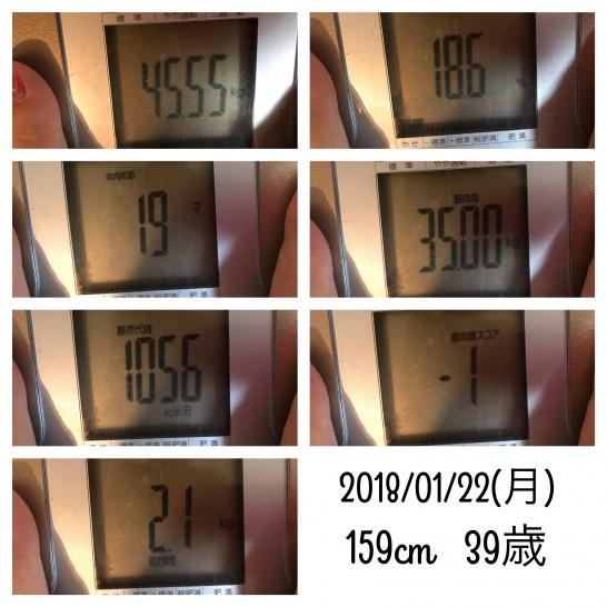 39歳主婦の体重と体脂肪
